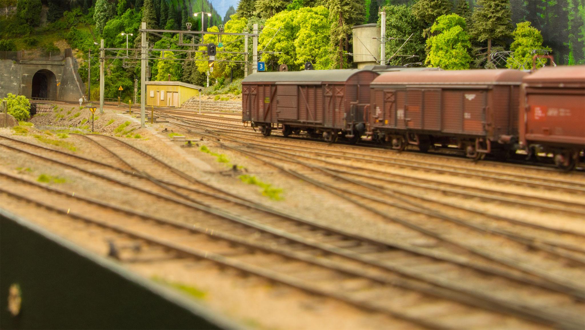 Modsatte ende af Dalen station med opstillede godsvogne