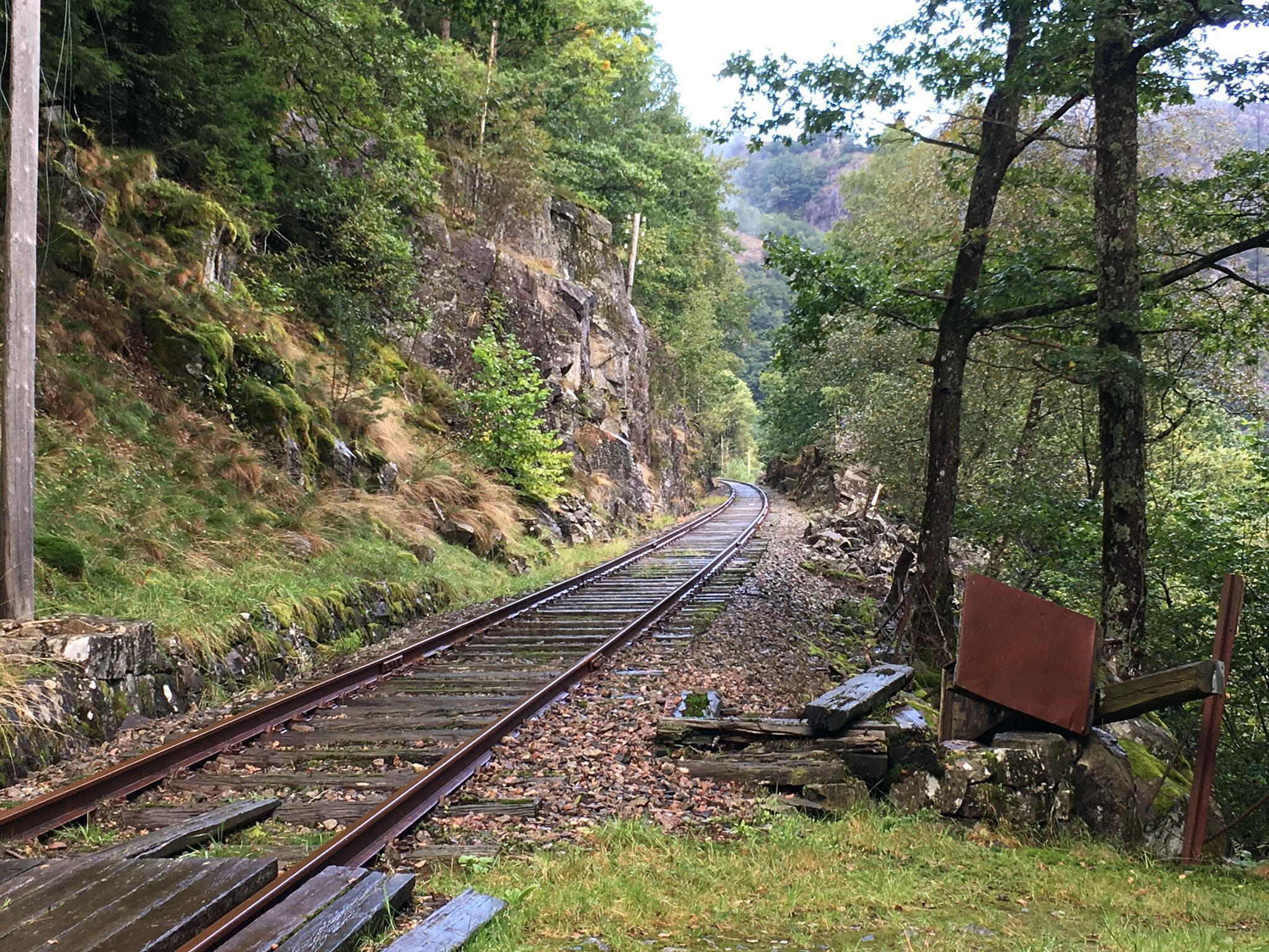 Jernbaneoverskæring ved trinbræt