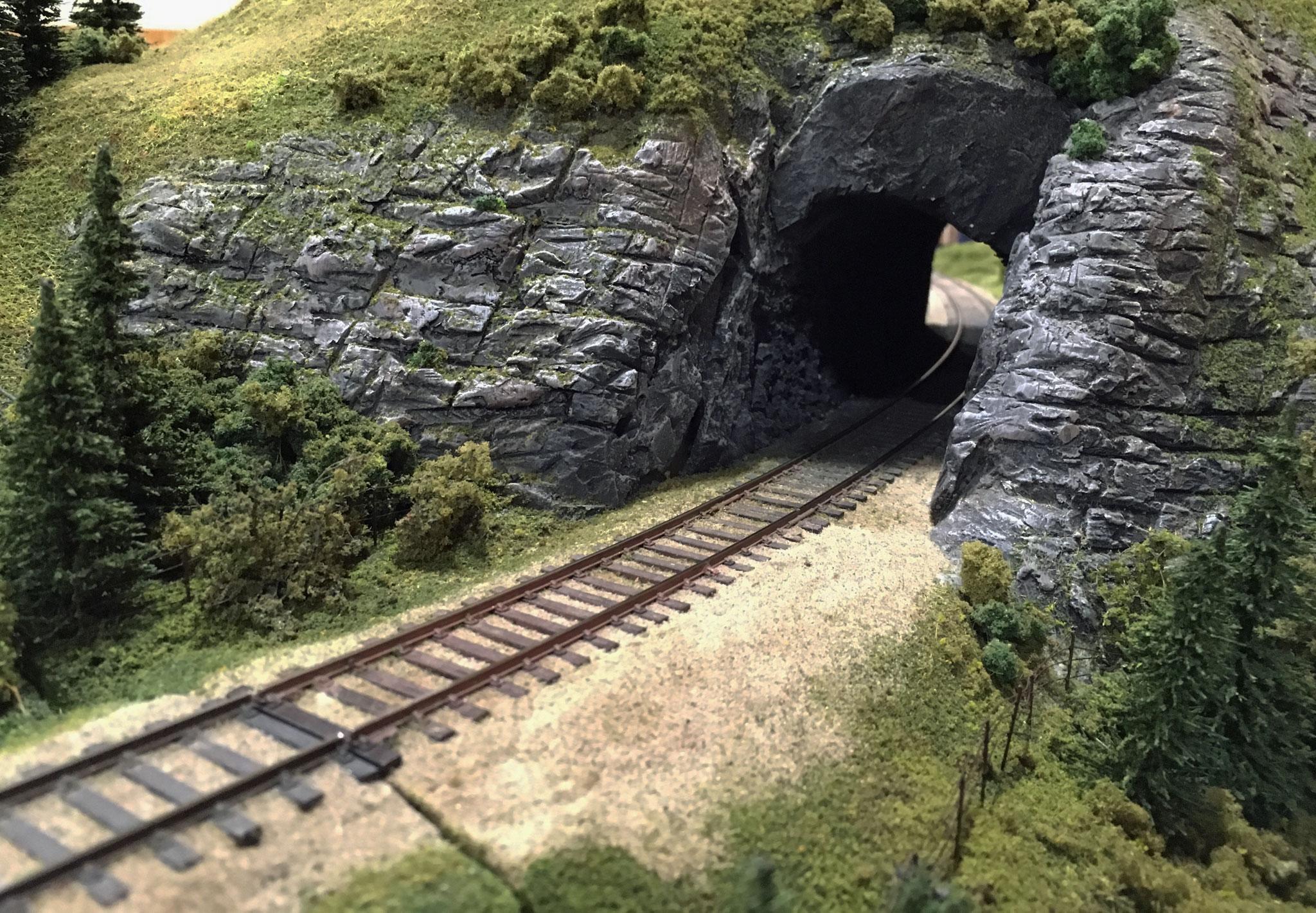 Strækningsmodul med tunnel