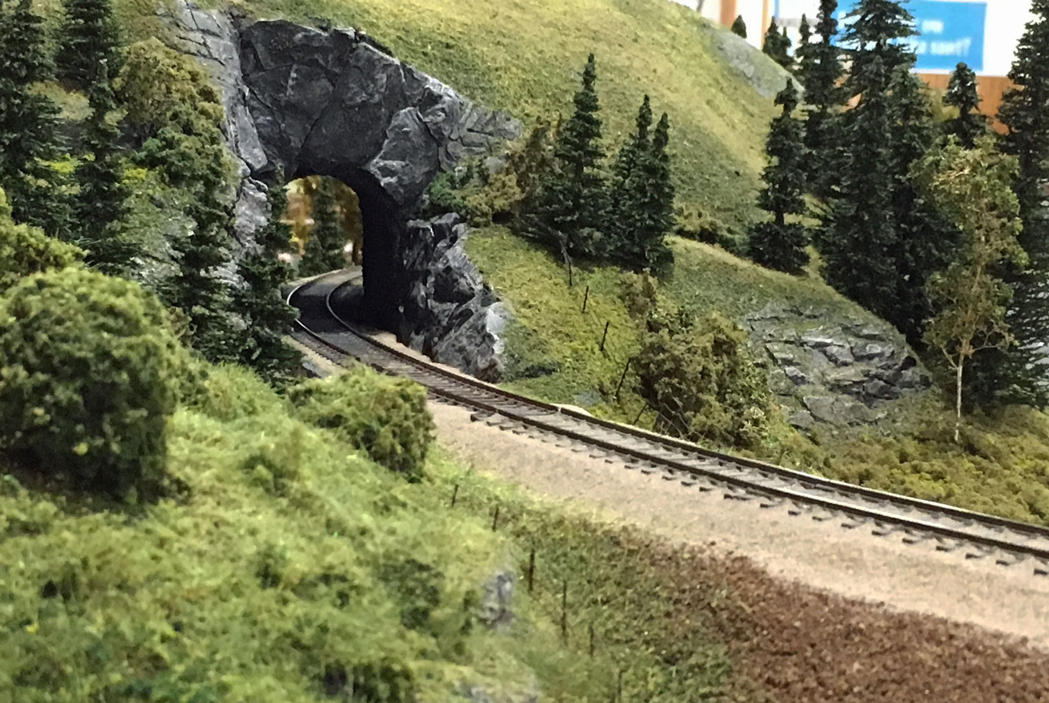 Strækningsmodul med tunnel og flot bevoksning