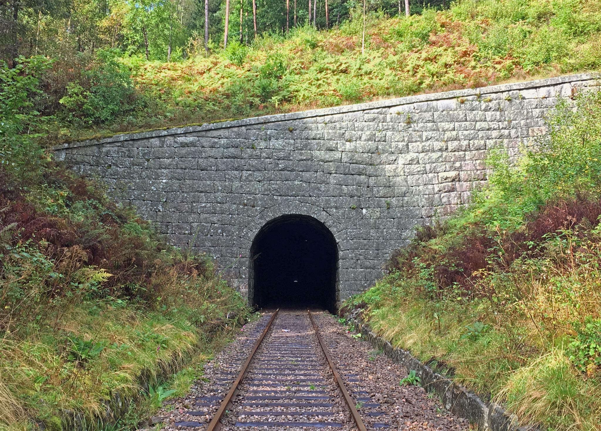 Der er en del tunneller på banen.  Læg mærke til toppen af udgangshullet i modsatte ende - banen flader ud nær enden af tunnellen